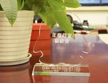 九鼎装饰荣获年度行业标杆两项大奖